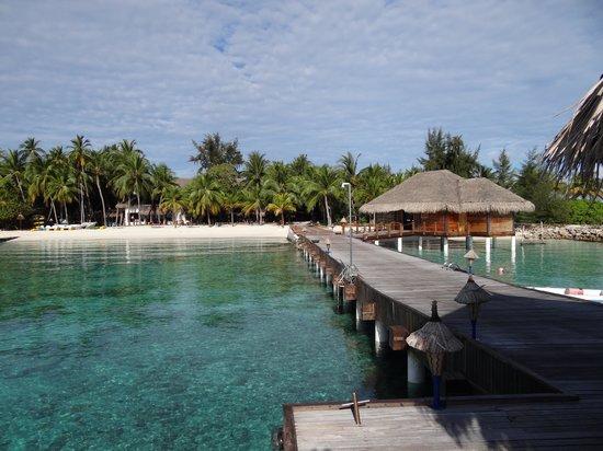 Vivanta by Taj Coral Reef Maldives: The reception
