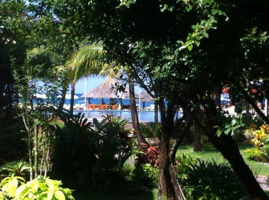 Eden Resort : Pool