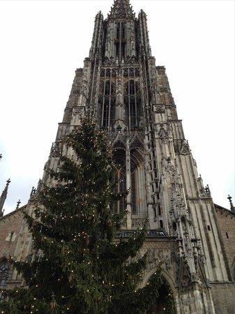 Ulmer Münster: 高い