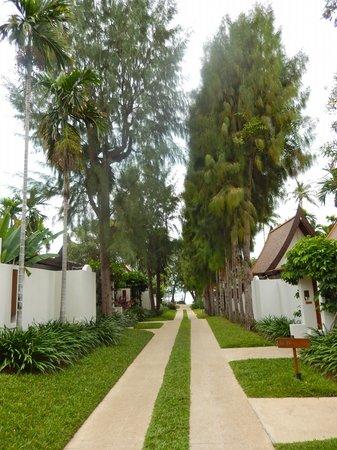 SALA Samui Choengmon Beach Resort: Tropical walkway leading to the beach