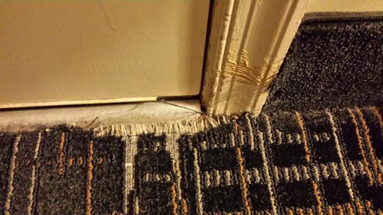 St. Michaels Inn: Typical Condition of Room