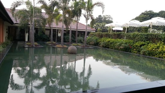 Madhubhan Resort & Spa : Beautiful pond with fish