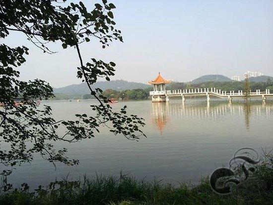 Dafu Mountain Forest Park: Pavilion