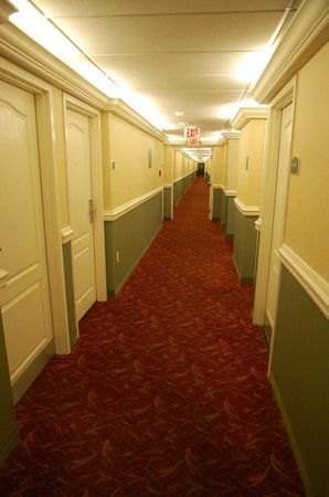 Clarion Inn & Suites: The hall leading past my room