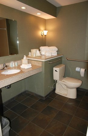 Clarion Inn & Suites : The bathroom