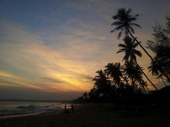 Ganesh Garden Beach Cabanas : Sunset Tangalle from ganesh garden cabanas beach