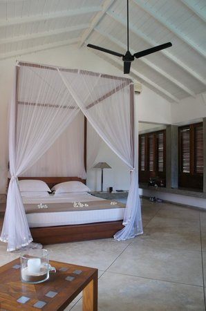 Frangipani Tree: Our spacious room