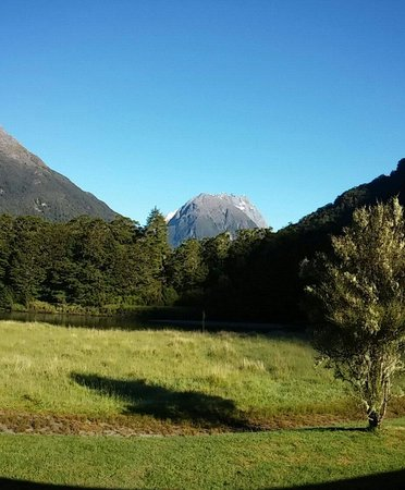 Ultimate Hikes Guided Walks: Glade house view with the original.pear tree over 100 years old
