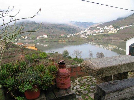 Quinta Da Azenha: Douro