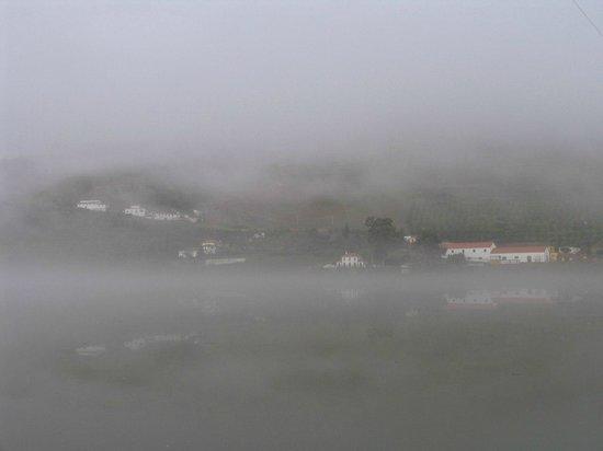 Quinta Da Azenha: Утренний туман на Douro