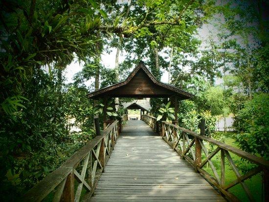 Sukau Rainforest Lodge: Nice walk to the restaurant