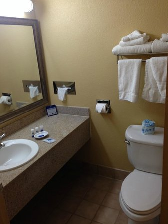 Sally Port Inn & Suites: Bagno