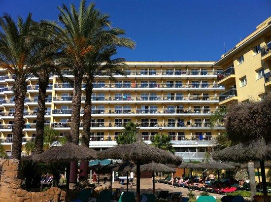 Rosamar Garden Resort: hotel vu de la piscine