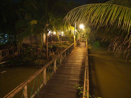 Sepilok Jungle Resort: Walkway at night.