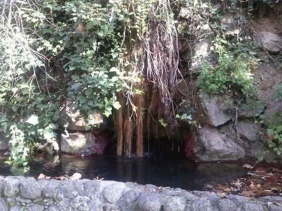 Villa Termal das Caldas de Monchique Spa & Resort: Fuentes naturales de agua