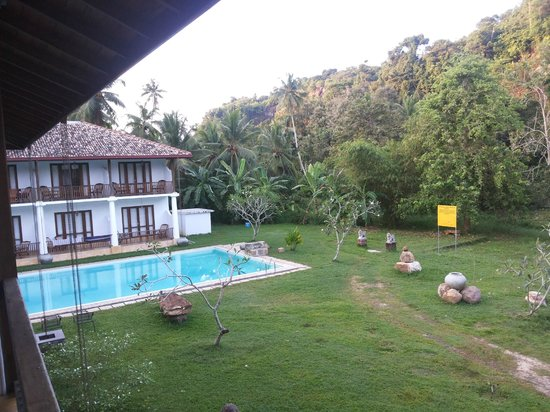 Nooit Gedacht Heritage Hotel : The pool and jungle beyond