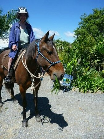 Boutique Horsetreks Day Tours : Paddy with the palm leaves