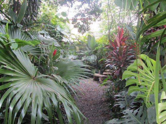 Hotel Aranjuez : Jardines
