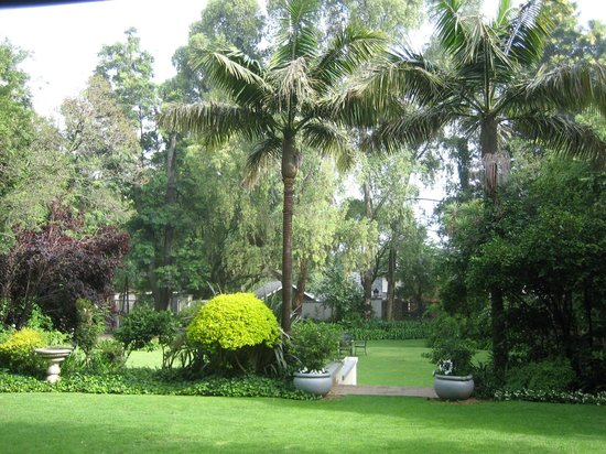 10 2nd Avenue Houghton Estate: Gardens