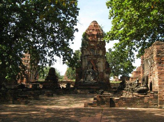 Wat Mahathat : Ruin Next to Buddha Head