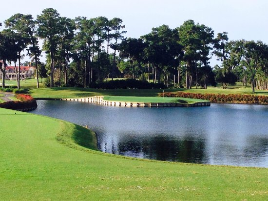 TPC at Sawgrass Stadium Course: TPC Sawgrass #17