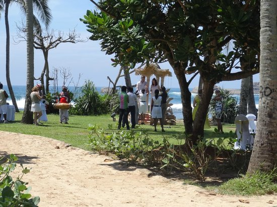 Hikka Tranz by Cinnamon: Wedding in garden next to beach