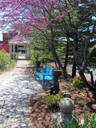 Walking To Allen Centennial Gardens >> West Walk In Spring Picture Of Allen Centennial Gardens Madison