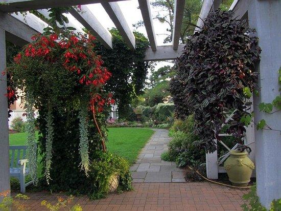 Allen Centennial Gardens: Pergola View Into English Garden