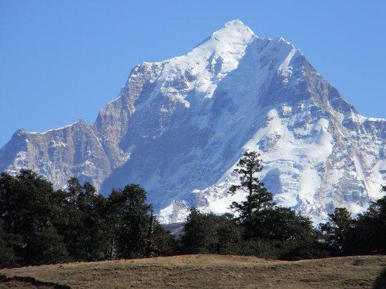 Clifftop Club : Nanda Devi peak view from my room
