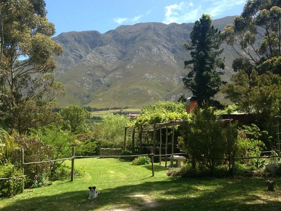 Moggs Country Cookhouse: The Restaurant location