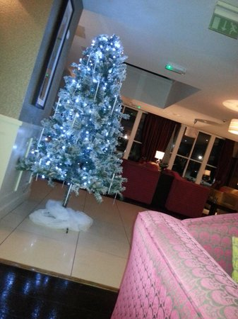 Redcastle Hotel: Christmas Tree