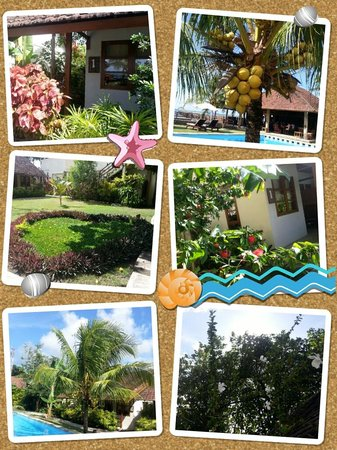 Cocotinos Manado : resort compound