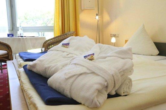 Mühlenthaler's Park Hotel Konz: Zimmer