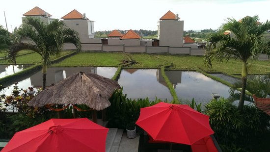 Villa Padi: View from second floor