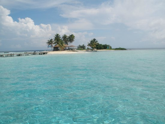 THE TOP 10 Belize City Shore Excursions (w/Prices) - Viator