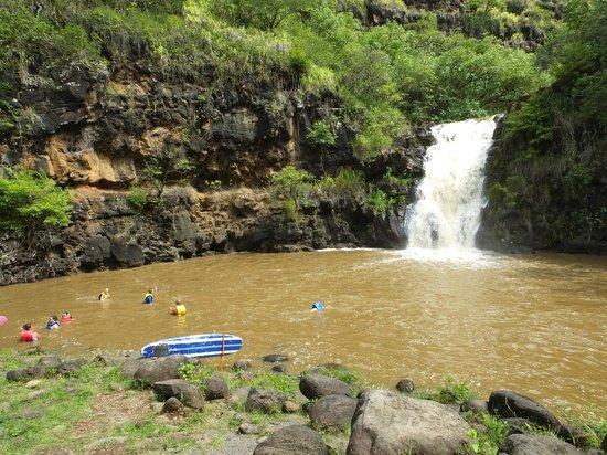Waimea Valley: How Good is this..?