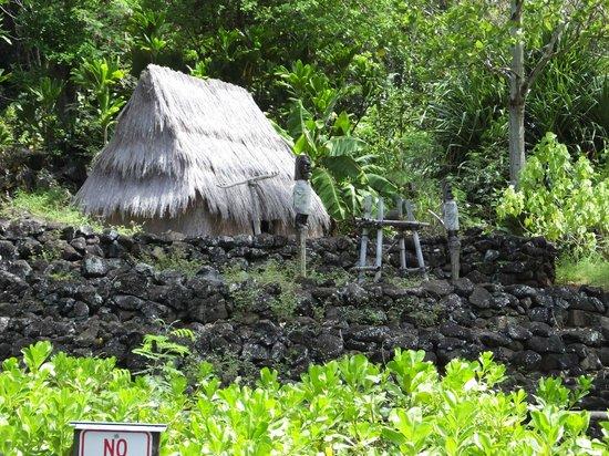 Waimea Valley: Ancient Island Settlement & Human Sacrifices..!