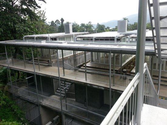 Belum Rainforest Resort : concrete structure