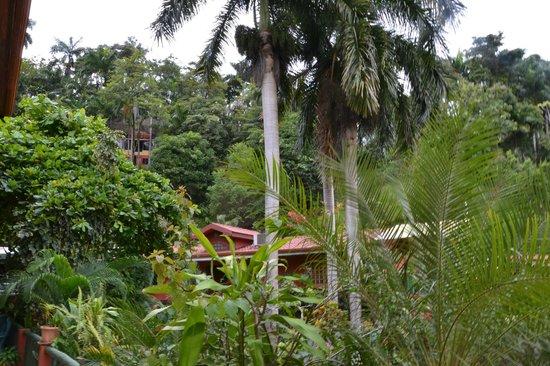 Condotel Las Cascadas: vista panoramica
