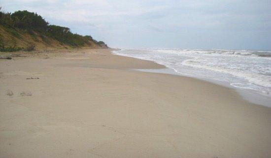 Trujillo Beach Eco Resort: 4.5 Kilometros de playa privada, una de las mas largas en Centroamerica!