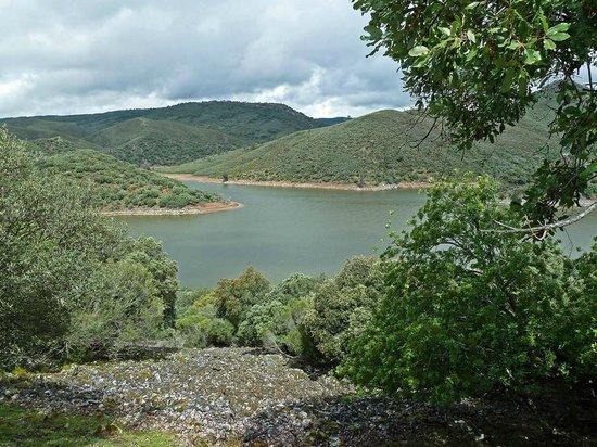 Monfrague National Park: Allí lo tienen