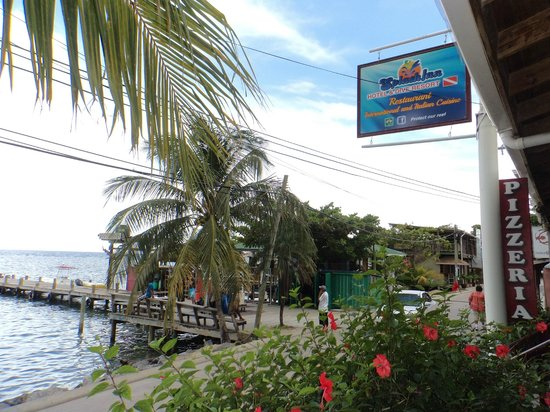 Splash Inn Dive Resort: SPLASH INN