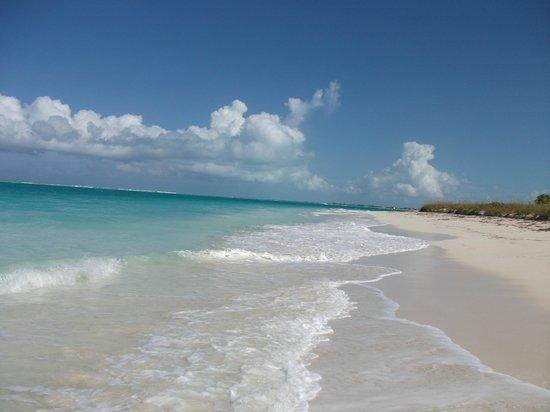 The Sands at Grace Bay: Grace Bay Beach