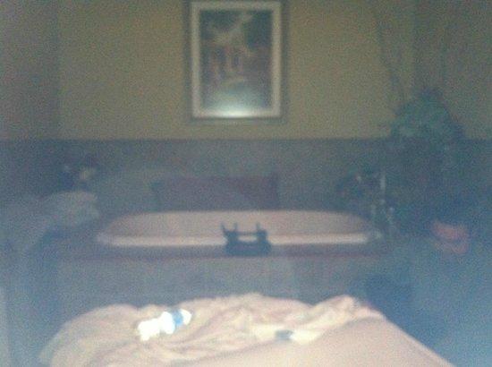 Goldmoor Inn : The Massage Room