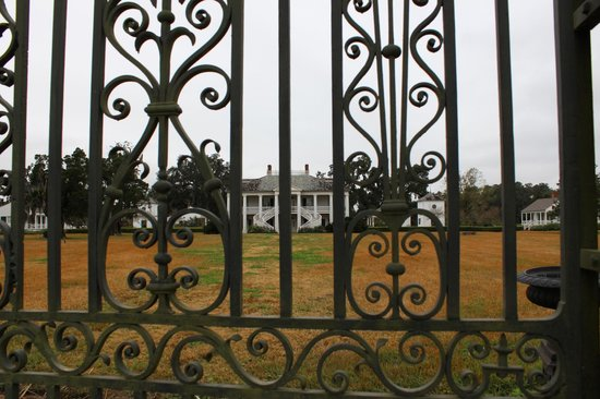 Evergreen Plantation: View of the Big House from the Gates