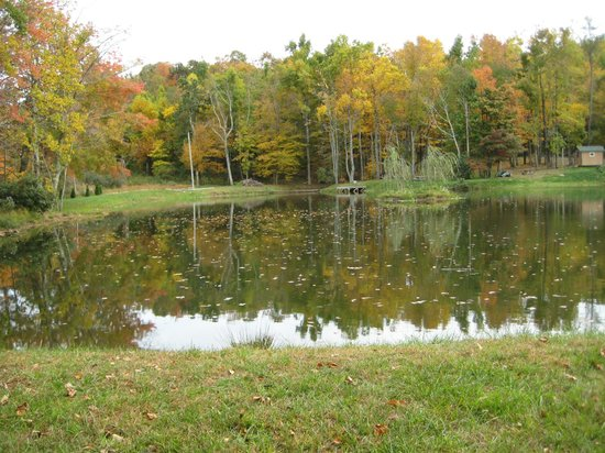 Parkway Cabins: View of the Pond