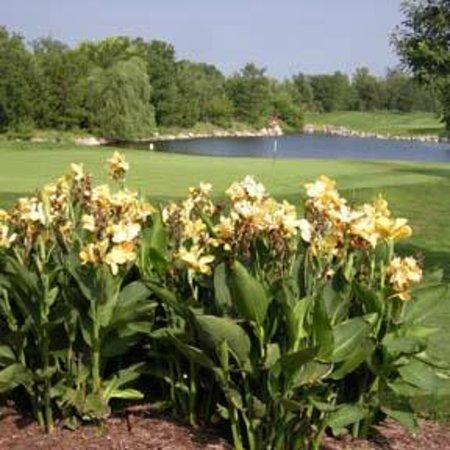 Wilderness Ridge Golf Club: Championship Course