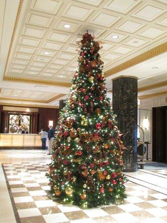 JW Marriott Essex House New York : Christmas Tree in the lobby quite festive