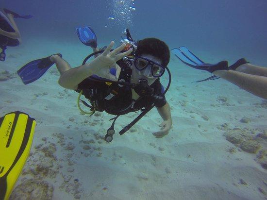Havana Dive: fun diving