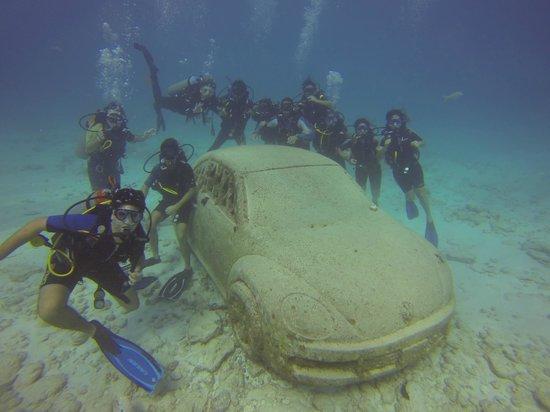 Havana Dive: museum under water cancun